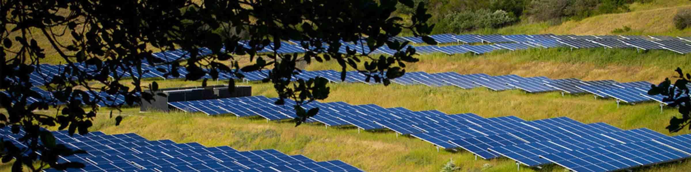 Solar Panels Field Header